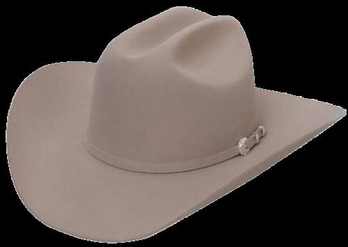 Sombreros Stetson - Distribuidora Nacional de Sombreros - Dinalsom deed247f3b5