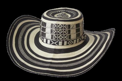 costeno - Distribuidora Nacional de Sombreros - Dinalsom fc540a35f42d